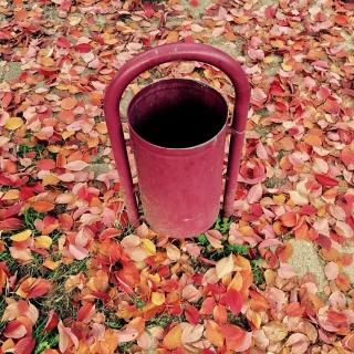 #whenbinsmatchplaces #autumnisokay #DHPHerbst