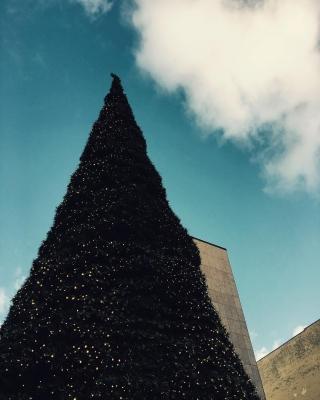 Ein Ohtannenbaum... #xmasgemütlichkeit