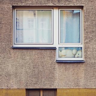 Berliner Bär.