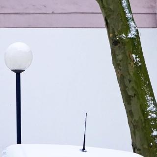 Lampe.Antenne.Baum